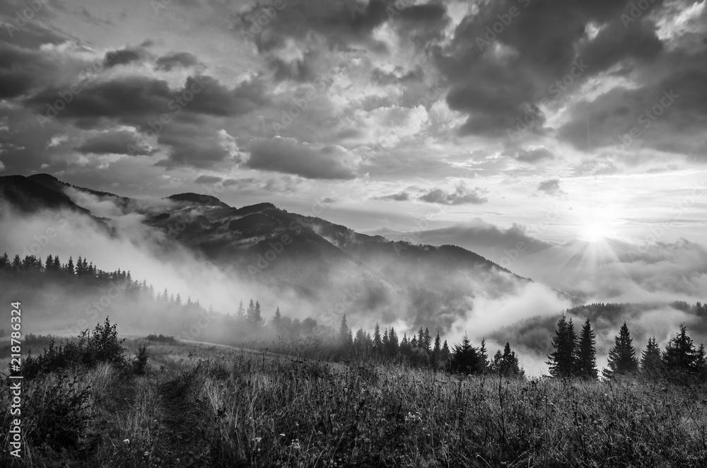 Fototapeta Foggy morning shiny summer landscape with mist, meadow and sun shining