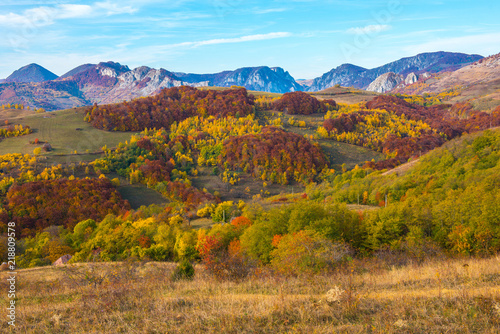 Poster Miel Colorful autumn landscape