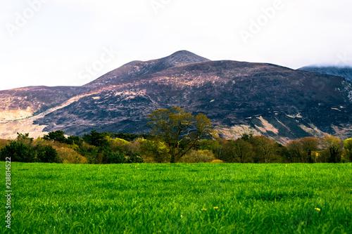 Deurstickers Groene Green - Ireland