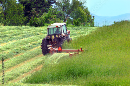 Valokuva Cutting Hay in Tennessee