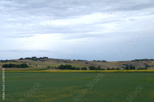 landscape,panorama,agriculture,countryside,summer,hill,crops,green,sky,cloudy
