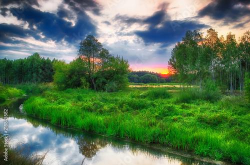 Deurstickers Groene Krajobraz letni nad dziką rzeką