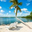 Florida Keys seascape