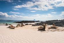 Ecuador. The Galapagos Islands...