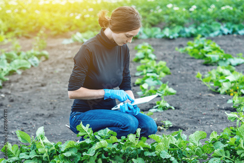Fototapeta Woman specialist agronomist holding a tablet. Concept of agricultural farms and quality control obraz