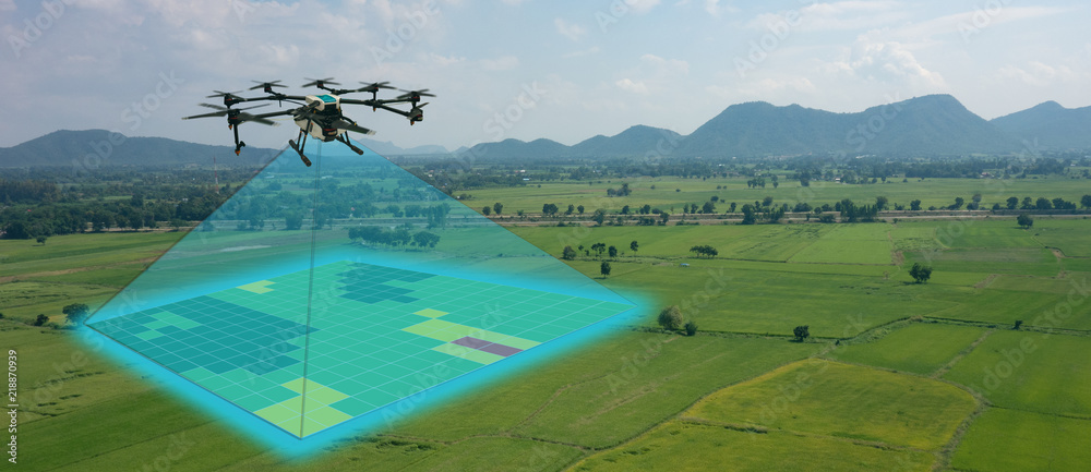 Fototapeta drone for agriculture, drone use for various fields like research analysis, safety,rescue, terrain scanning technology, monitoring soil hydration ,yield problem and send data to smart farmer on tablet