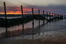 Seaweed Covered Breakwater On ...