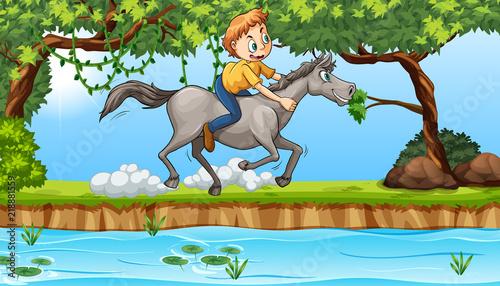 Poster Oiseaux, Abeilles boy riding a horse