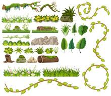A Set Of Jungle Element