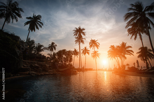 Silhouettes of palm trees on a tropical beach at dusk.
