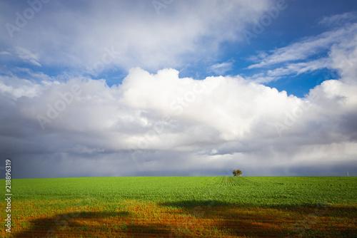 Fotobehang Landschap Australian countryside landscape sunny green fields farm land with clouds