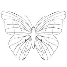 Book Coloring Butterfly
