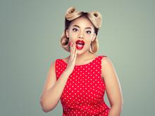 Pin Up Vintage Woman Beauty Po...