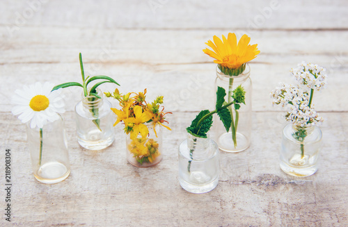 Obraz extracts of herbs in small bottles. Selective focus. - fototapety do salonu