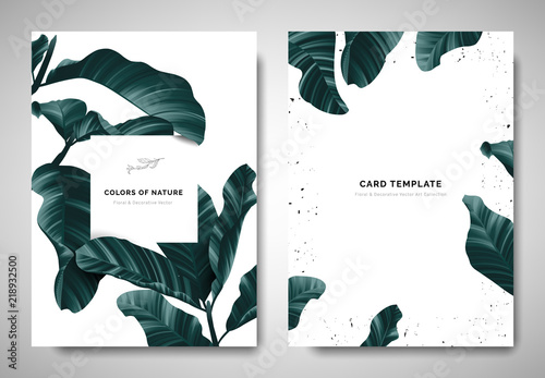 Fotografie, Obraz  Greenery greeting/invitation card template design, dark green leaves with white