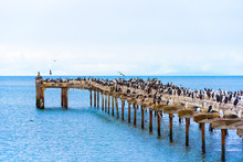 Old Wooden Pier With A Crowd O...