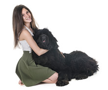 Newfoundland Dog And Woman