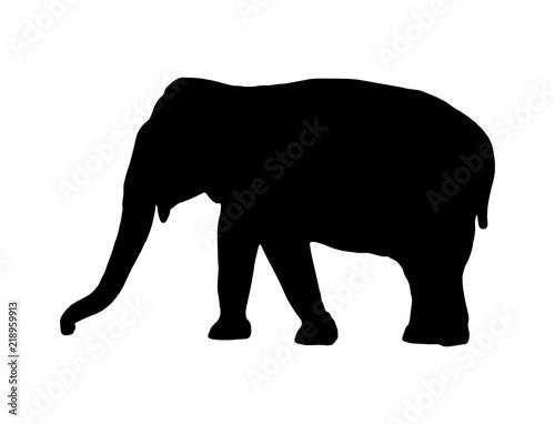 Vector elephant black silhouette Wallpaper Mural