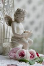 オールドローズと本を読む天使