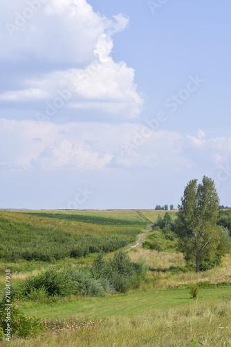 Foto op Aluminium Blauwe hemel Beautiful landscape