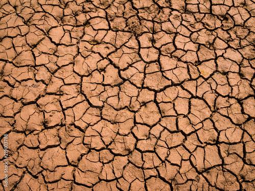 Fotografie, Obraz  Trockener und rissiger Boden während einer Dürre in Deutschland