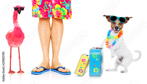 Photo sur Aluminium Chien de Crazy dog and owner on summer vacation