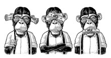 Three Wise Monkeys. Not See, N...