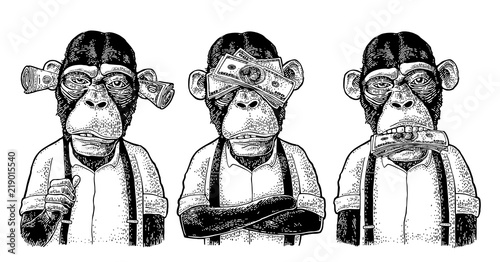 Naklejka premium Trzy mądre małpy. Nie widzieć, nie słyszeć, nie mówić. Grawerowanie vintage