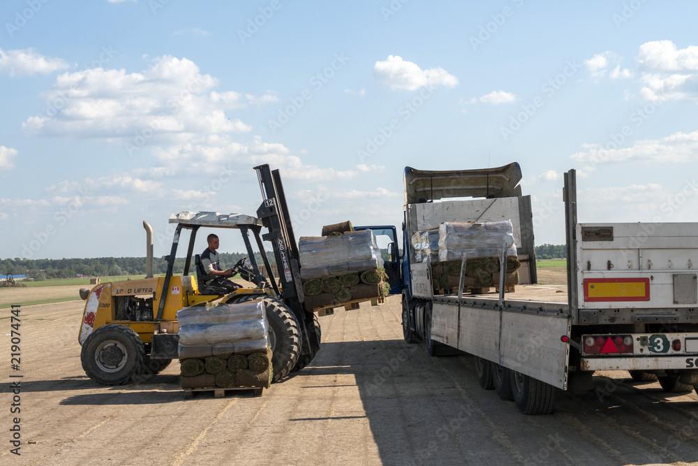 Fotografía Wheel loader machine transportation pallet with green