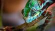 part of a lizard of a chameleon closeup