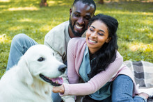Happy African American Couple Palming White Dog In Park