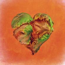 Flower Heart, Heart-shaped Flo...