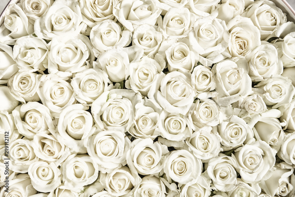 Fototapety, obrazy: Many white roses are a top view. Vintage style.