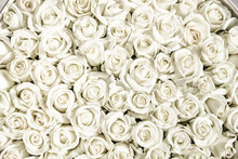 Many White Roses Are A Top Vie...