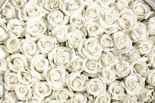 Foto op Aluminium Roses Many white roses are a top view. Vintage style.