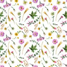 Watercolor Wild Plants Of Scotland. Light Seamless Pattern