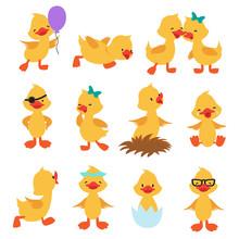 Cartoon Cute Ducks. Little Bab...