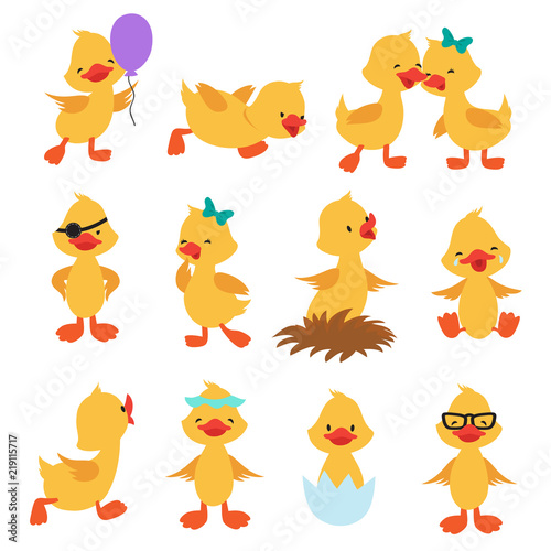 Cartoon cute ducks. Little baby yellow chick vector isolated characters Wall mural