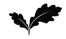 Oak Leaves Graphic Icon. Oak L...