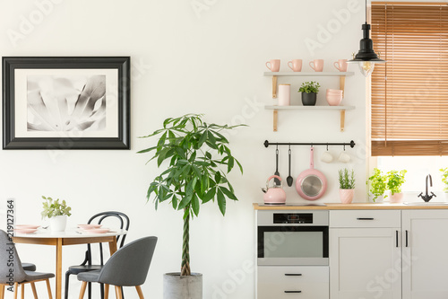 Fresh Plant Standing Next To Wooden Dining Table With Chairs