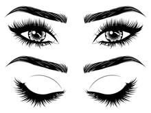 Eyes With Long Eyelashes And B...