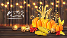 Autumn Harvest Card Vector Realistic With Pumpkin, Corn, Walnuts. Detailed 3d Design. Wooden Background With Lights