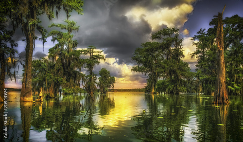 Acrylic Prints Central America Country Bayou de Lafayette