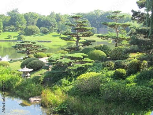Plakat Ogród Japenese