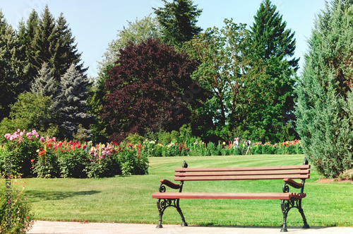 Admirable Brown Bench In Foreground Meadow With Grass And Flowers Gmtry Best Dining Table And Chair Ideas Images Gmtryco