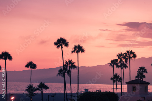 Purple sunset in Santa Monica with silhouettes of palms