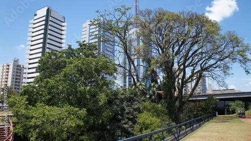 Foto op Aluminium Grijze traf. Brazil
