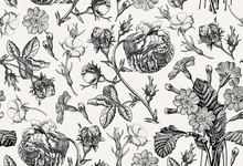 Seamless Pattern Beautiful Blooming Realistic Isolated Flowers Vintage Background Rose Primrose Wildflowers Wallpaper Drawing Engraving Vector Victorian Illustration