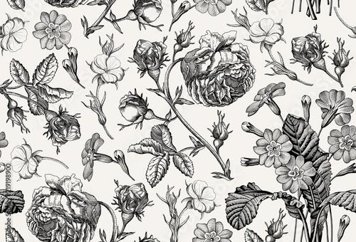 Fototapeta Seamless pattern Beautiful blooming realistic isolated flowers Vintage background Rose primrose wildflowers Wallpaper Drawing engraving Vector victorian Illustration obraz