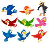 Fototapeta Fototapety na ścianę do pokoju dziecięcego - A set of beautiful bird